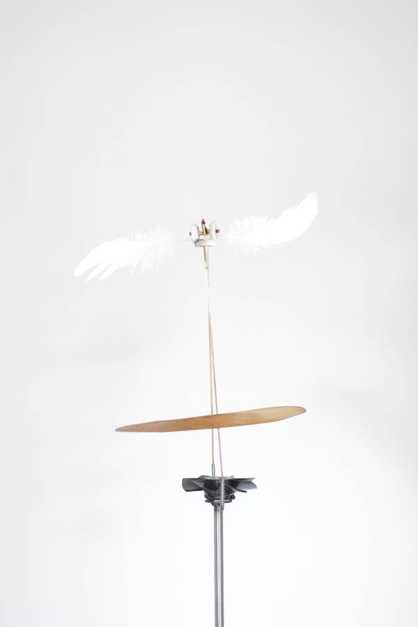 florent-albinet01